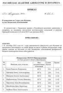 RAAN-Prik-11